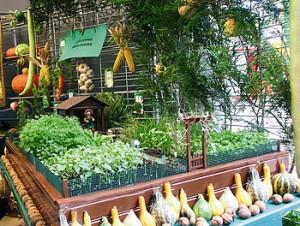 Al s se met au vert avec ses jardins familiaux cartridge for Jardin 50m2 amenager